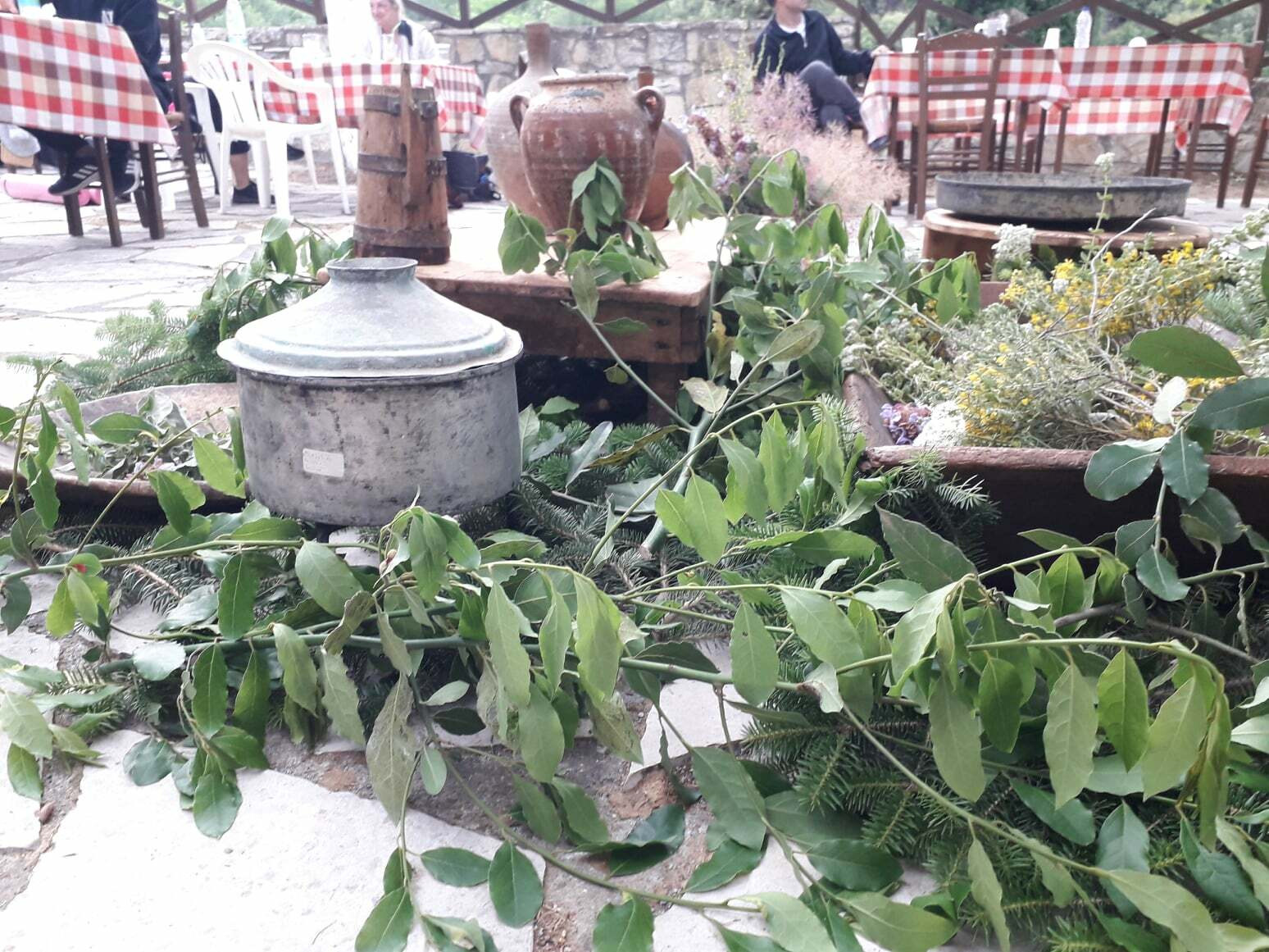 enallaktikes-drastiriotites-boreia-kynouria