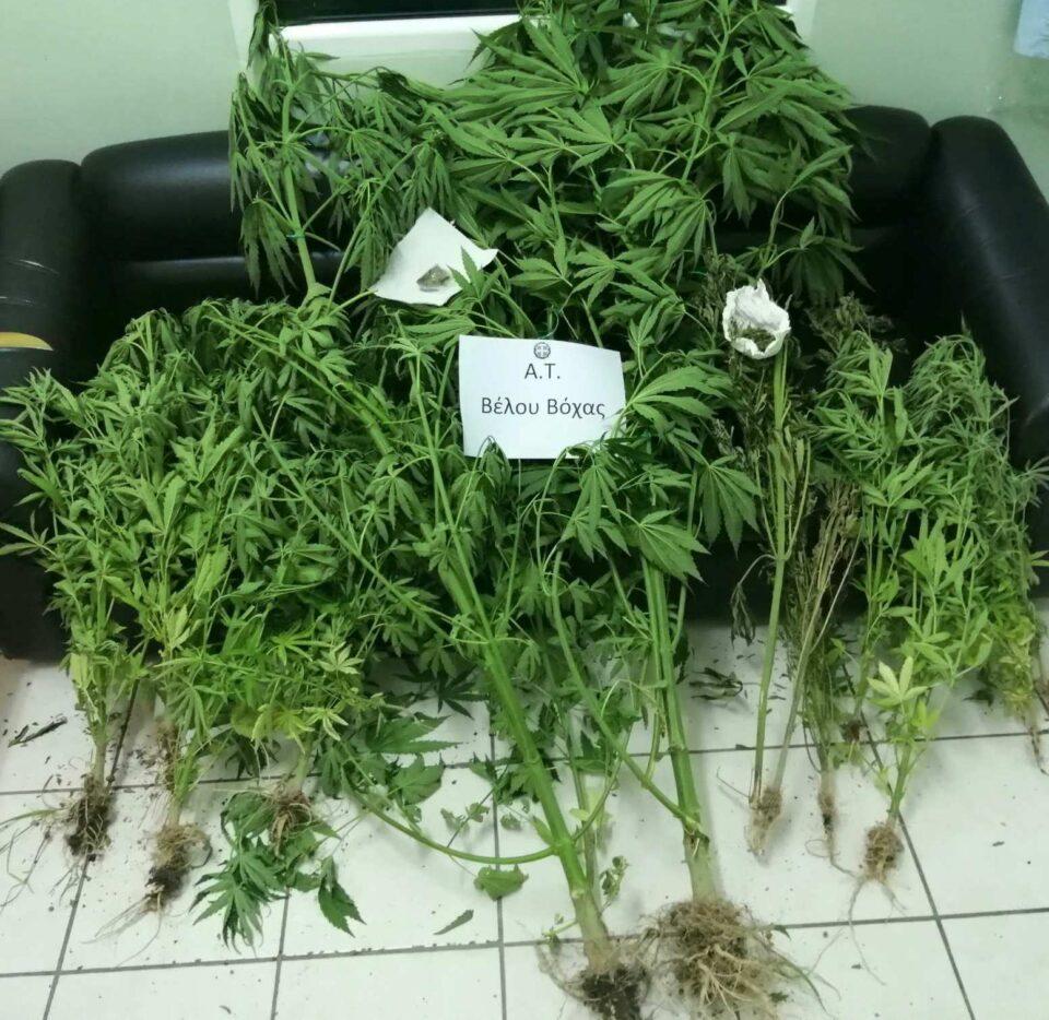 vraxati-korinthias-narkotika